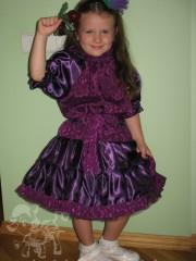 Айстра фіолетова 2