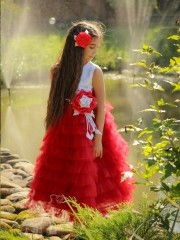 Сукня 1119