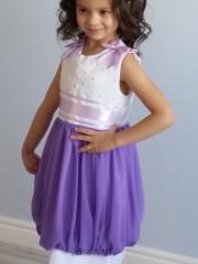 Айстра фіолетова